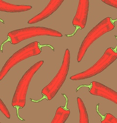 Sketch chilli pepper in vintage style vector image