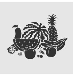 Symbol Set Fruit vector image