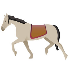 white horse isolated vector image