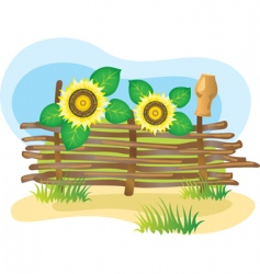 Wicker fence and sunflowers vector