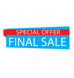 special offer final sale banner on white vector image