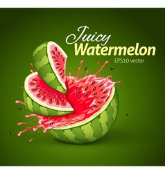 Watermelon with juice splash vector image