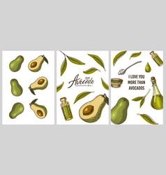 avocado cards green templates banner organic vector image