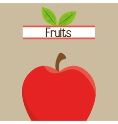 fruit fresh food icon vector image