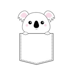 koala bear head face in the pocket holding paw vector image