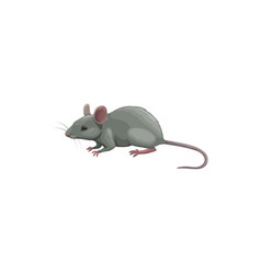 Mouse icon pest control rodents extermination vector