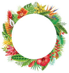 Round frame from tropical plants vector