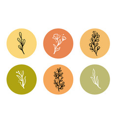 Set floral elements for stoty highlight vector