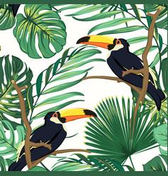 Toucan birds natural habitat in exotic tropical vector