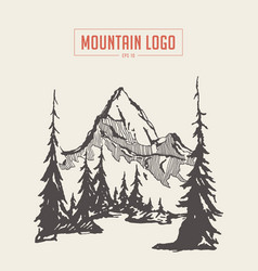 two mountains spruce forest river sketch vector image