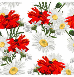 wild flower pattern with red poppy and camomile vector image