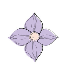 Beauty flower with petals to decorative design vector