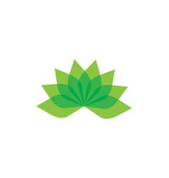 Beauty flowers logo template vector