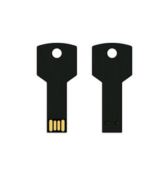 Black usb key flash drive isolated on white vector