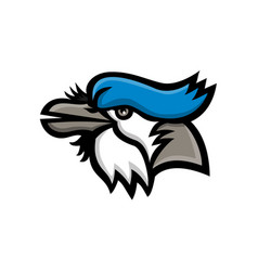 Blue jay head mascot vector