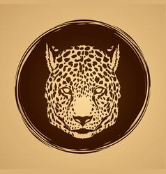 Cheetah face tiger head panthera front view face vector