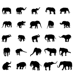 Elephant silhouettes set vector