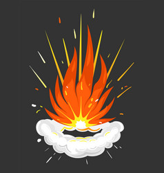 Explosion fire and smokeexplosive details icon vector