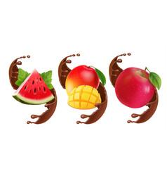 fruits in chocolate splash vector image