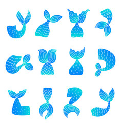 mermaid tails drawing ocean marine symbols of vector image
