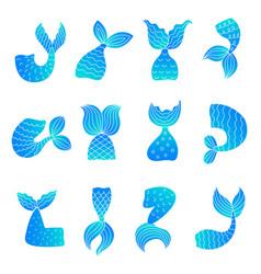 Mermaid tails drawing ocean marine symbols vector
