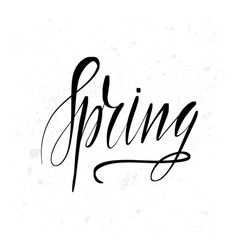 spring lettering card typographic design vector image