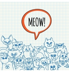 doodle cat background vector image vector image