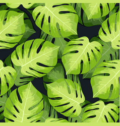 monstera tropical palm leaves pattern vector image vector image