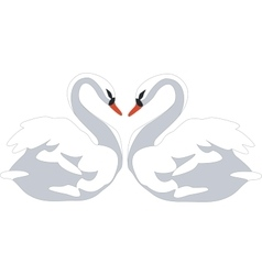 swan couple color 01 vector image vector image