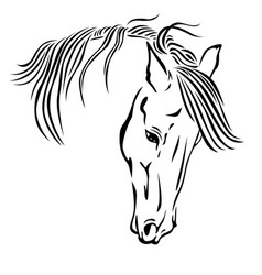 Beautiful horse head vector