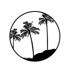 black and white summer tropical border with palm vector image