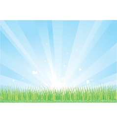 Blue sky and green grass background vector image