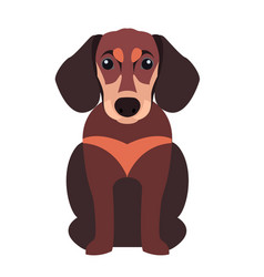 Cute dachshund dog cartoon flat icon vector