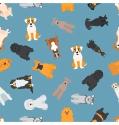 Different dogs breed seamless pattern vector