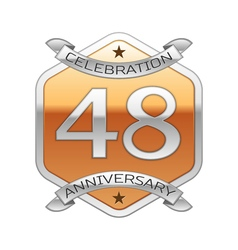 Forty eight years anniversary celebration silver vector image