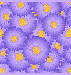 purple aster daisy flower seamless background vector image