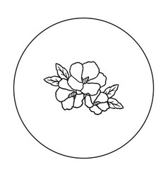 rose of sharon icon in outline style isolated on vector image
