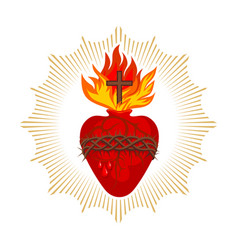 sacred heart jesus christ vector image