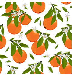 seamless pattern orange fruits with flowers vector image