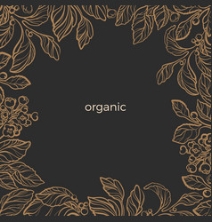 template organic branch vector image