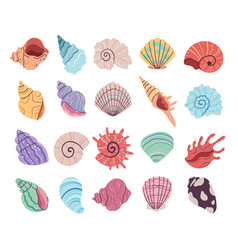 tropical underwater seashell clam oyster shells vector image