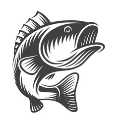 Vintage bass fish concept vector