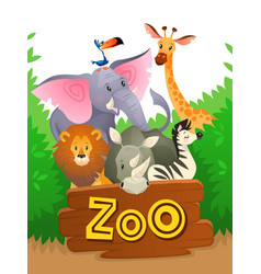 Zoo animals african safari wildlife cute groups vector