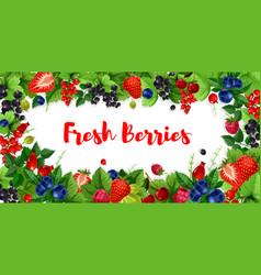 berries and sweet garden fruits banners vector image vector image