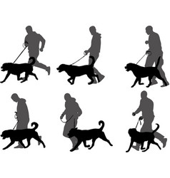Man walking dog vector