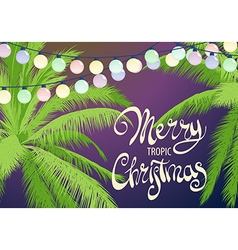 Christmas palm trees vector image