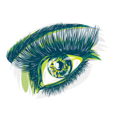 drawing of a blue eye of a woman vector image