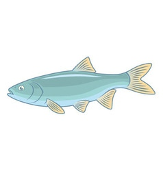 Fish ide vector