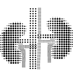 Icon Human lungs vector image