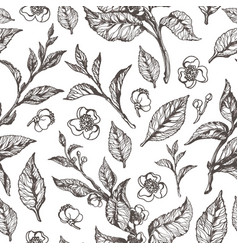 Pattern flora leaves flowers vector